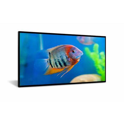 dynascan-di551st2-pantalla-de-senalizacion-1388-cm-546-lcd-full-hd-pantalla-plana-para-senalizacion-digital-negro-android