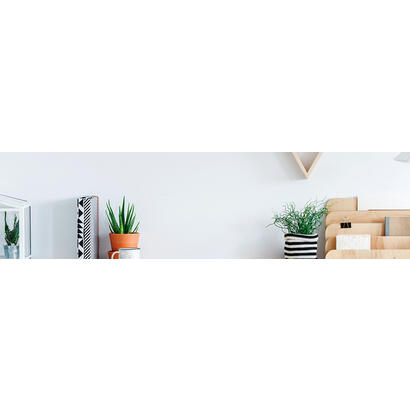 monitor-led-238-aoc-24b2xdam-negro-vgahdmidvi1920x108075hzvesa-100x1004ms-24b2xdam