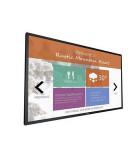 Monitores y pantallas de gran formato